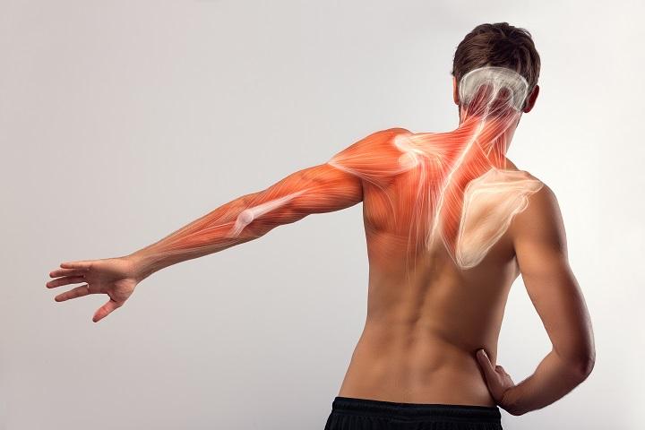 diéta a vállízületek fájdalma miatt