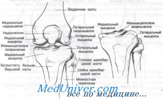 gyógyulás a könyökízület condyle törése után)