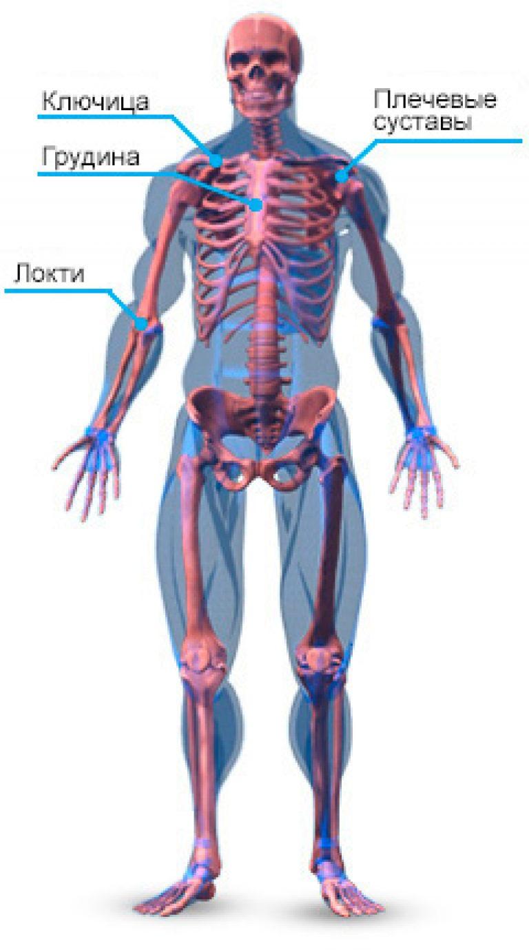 sterno-costalis ízületi fájdalom)