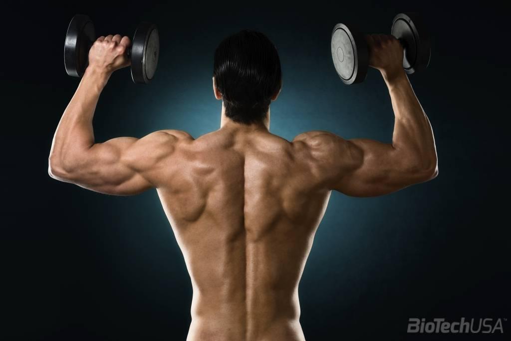 edzés után fáj a vállízületek)