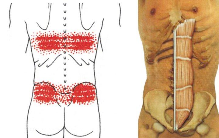 hogyan lehet azonosítani az ízületeket vagy az izmokat ízületi reuma kezelés