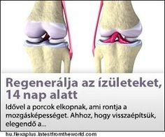 az ízületek osteoarthritis kezelése fóliával)
