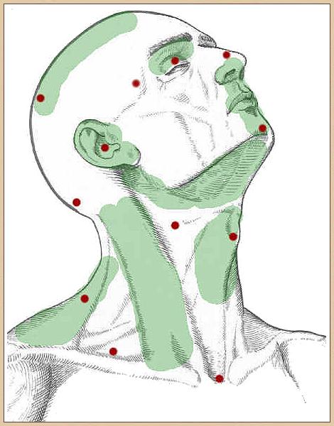 milyen gyógyszerek a térdfájdalomra fa tetvek ízületi fájdalmakhoz