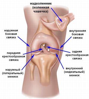 a térdízület belső ligamentumának sprainje
