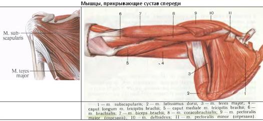 a csuklóízület 1. fokozatának artrózisa