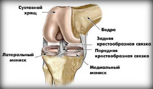 folyadék halmozódik fel a térdízületben és fájdalom)