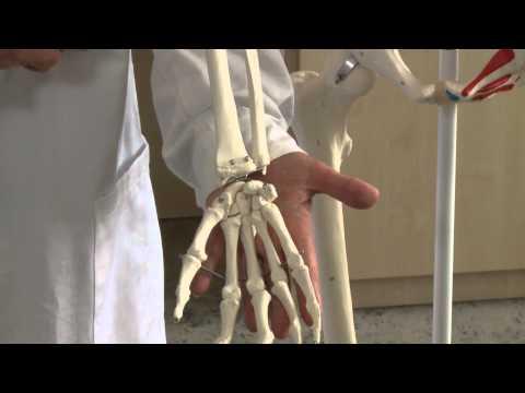 nanoplasztikus ízületi fájdalom esetén kenőcsök és gélek oszteokondrozis kezelésére