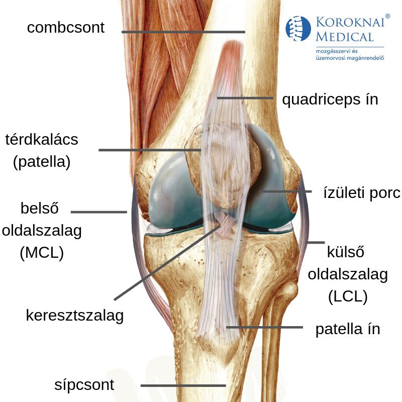 összeroppant és fáj a lábak ízületei