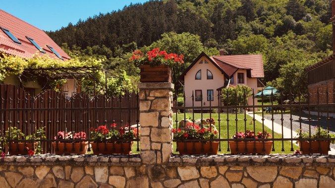 Nyílás után: mi legyen a tulipán hagymáival? - Bálint gazda kertje   Bálint gazda kertje