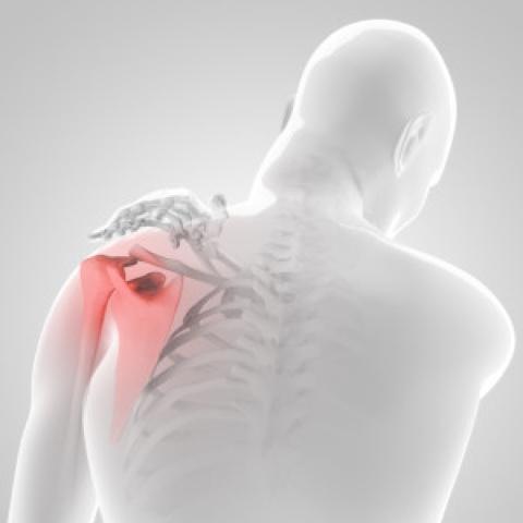 vállízület fájdalom edzés közben)