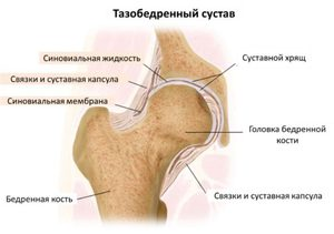térdízület betegség oka