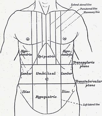 Mi hol fáj, hogyan fáj – hasi fájdalmak elkülönítése