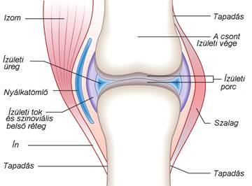 csípőízület ízületi gyulladása 1- 2 fokos kezelés