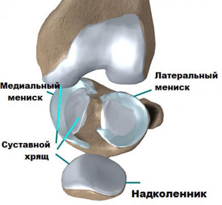a bal térdízület meniszkuszának károsodása)