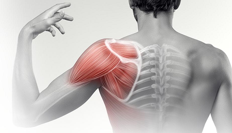 fizikai aktivitással, a vállízület fájdalmával)
