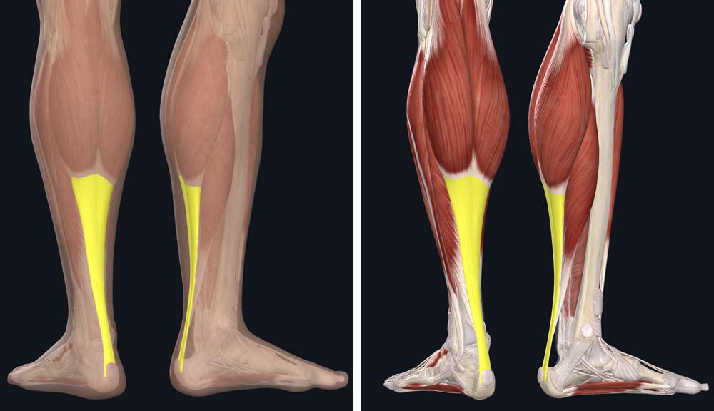 a lábízületi fájdalom eltávolítása