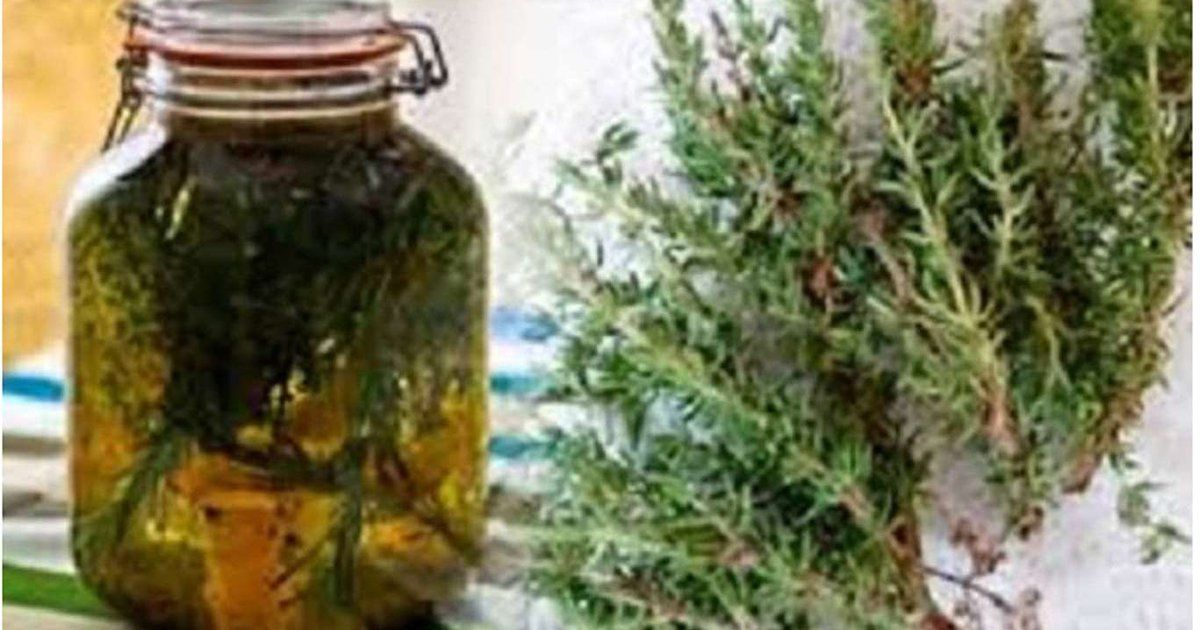 Gyógynövények az ízületi betegségek terápiájában