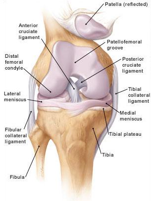 térd sérülés térd fájdalom ujjduzzanat ízületi gyulladás