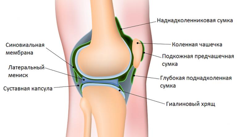 Felépülés a boka szalagok szakadása után - Diagnosztika July