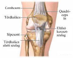 boka ínszalag sérülésének tünetei