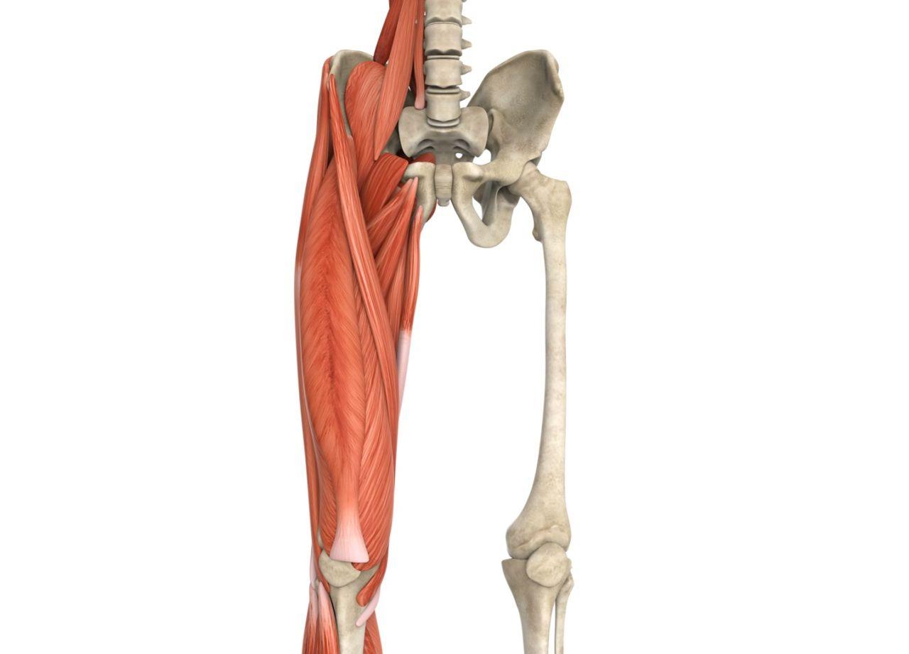 csípőízület fájdalom fekve