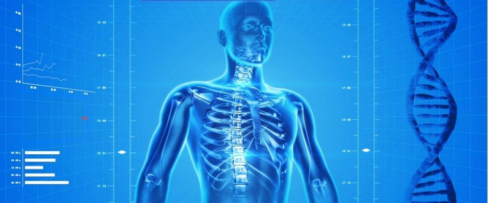 Csontritkulás (osteoporosis)
