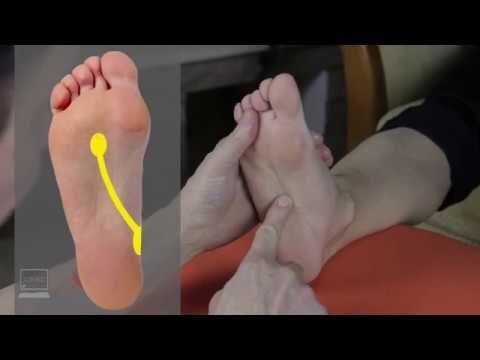 fájdalom a jobb lábban)