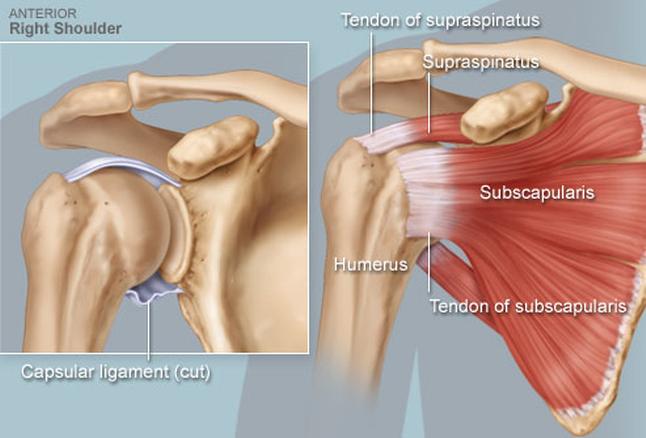 fájdalom a vállízület sérülése után)
