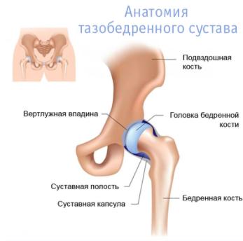 fájdalom, ha séta ad a csípőízületre)