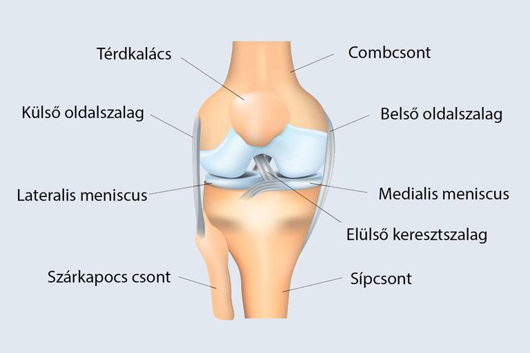 hátsó térdízület fájdalma