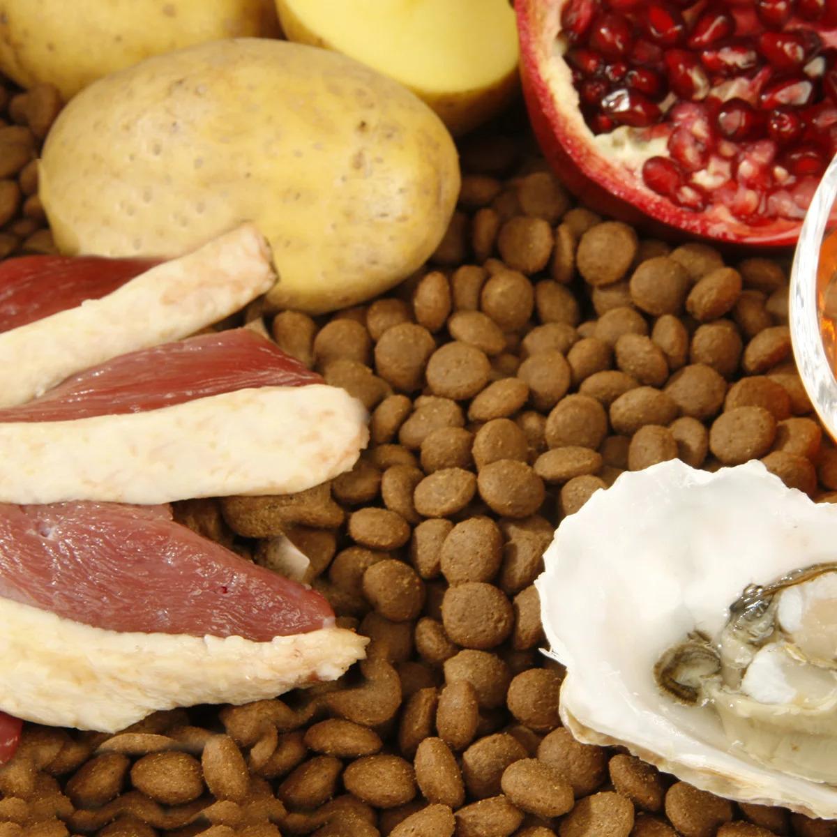 kondroitinben és glükózaminban gazdag ételek
