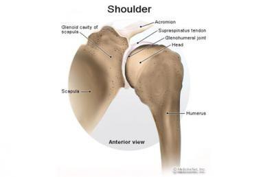 A térdsérülések fajtái és kezelésük - Térdízületi fájdalom sérülés után