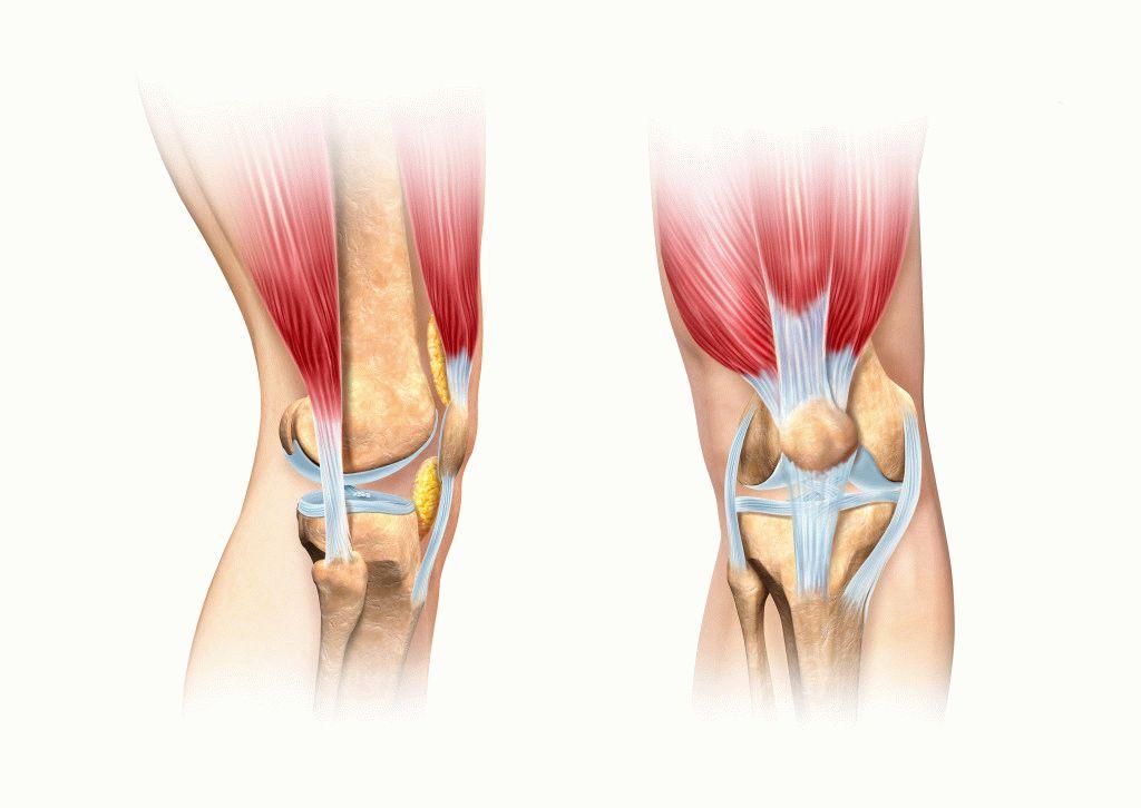 mi a teendő, ha a bokaízület fáj