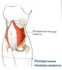 térdízület duzzanata artrózissal)