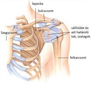 váll-váll artrózis kezelés
