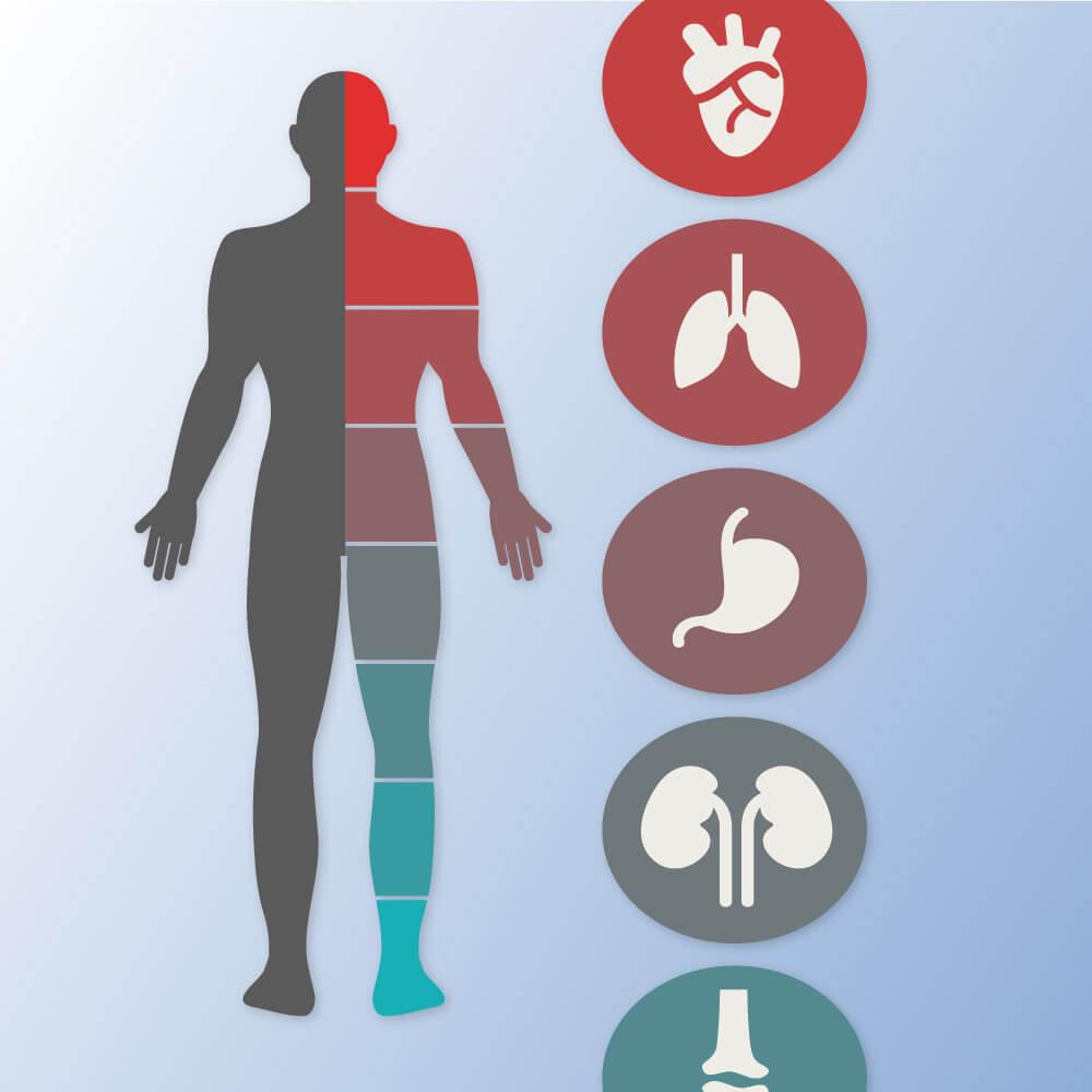 ízületi fájdalom a hasban élő és holtvíz ízületek kezelése