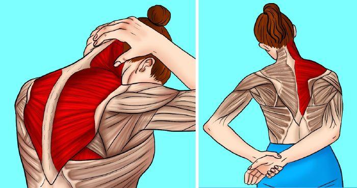 hogyan lehet enyhíteni a jobb vállízület fájdalmát)