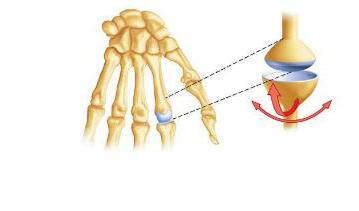 Hogyan kezeljük a fájdalmat a csípő izmokban? - Zúzódások
