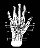 megtöri a kéz és a láb ízületeit, mint hogy kezelje)
