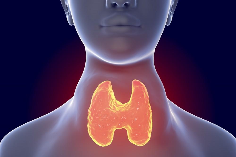 A pajzsmirigy-alulműködés okai és tünetei